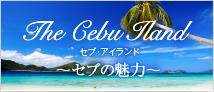フィリピン セブ島での不動産投資 the cebu iland
